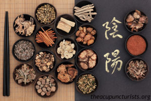 Chinese Herbalist Margate South Florida