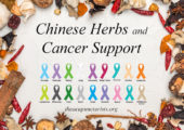 Chinese Herbal Medicine and Cancer Support