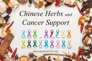 Chinese Herbs and Cancer Support