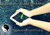 Chinese Herbs in the Treatment of Infertility
